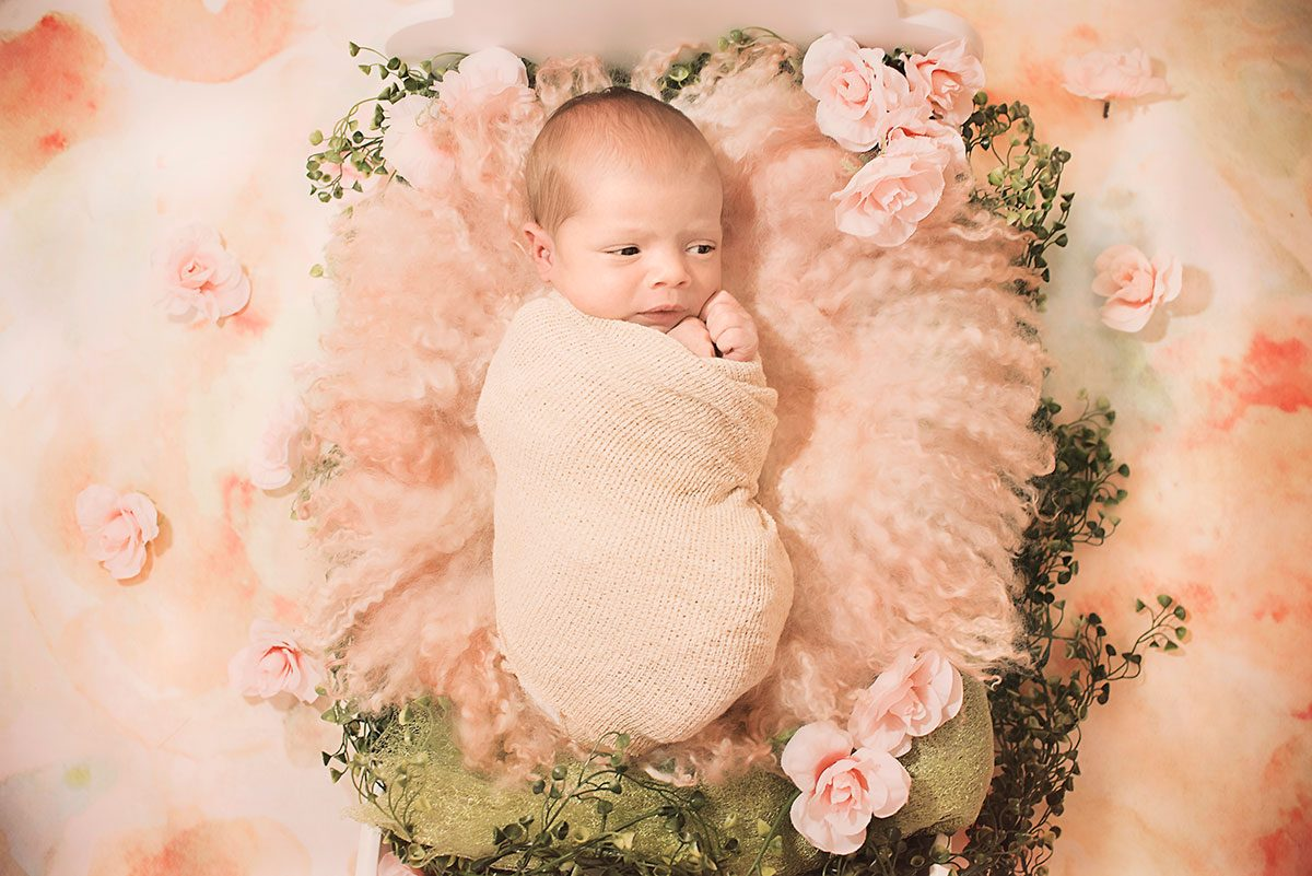 Newborn Nicole Greenville SC Photograopher